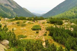 Sightseeing in Pirin mountain