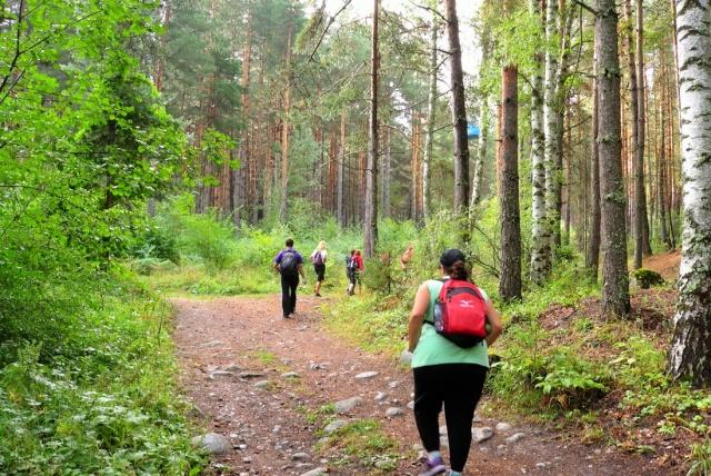Mountain walk in Pirin   LuckyFit