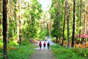 [:bg]Участниците са на поход в планина Рила[:en] Participants on a hike in Rila[:]