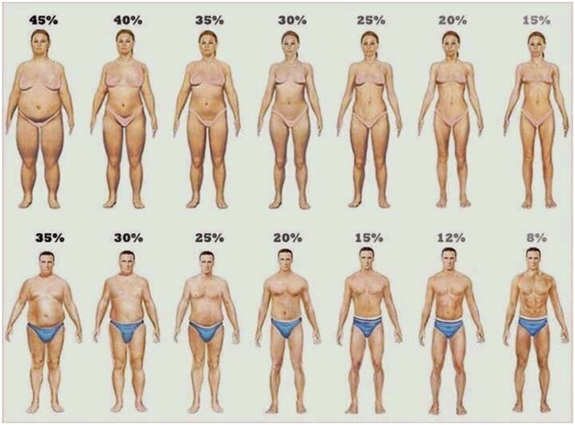WHY THE PERCENTAGE OF FAT INCREASES?