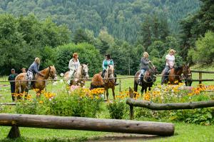 [:bg]Езда за всички нива[:en]Horse-riding for all levels[:]