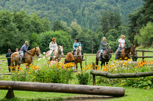 Horse-riding for all levels