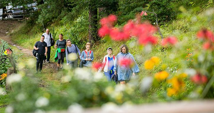 [:bg]Разходка сред планински цветя[:en]A walk among mountain flowers[:]
