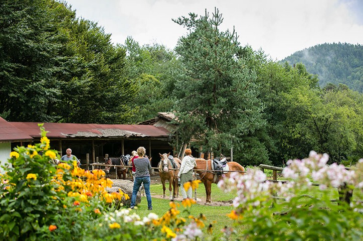 Horseback riding in the mountain   LuckyFit