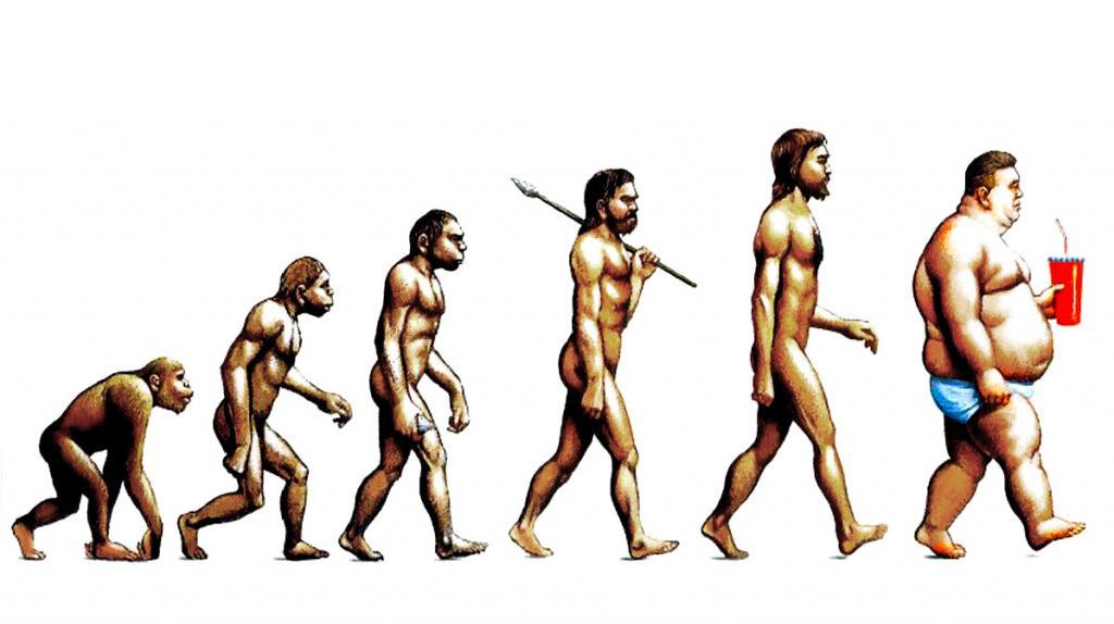Evolution of obesity   LuckyFit