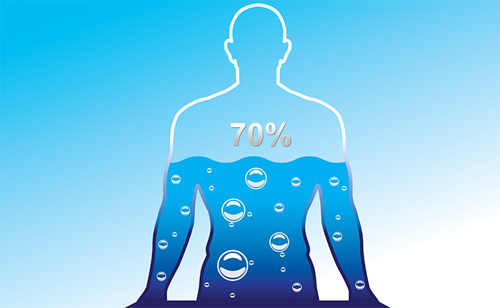 The water in the human body   LuckyFit