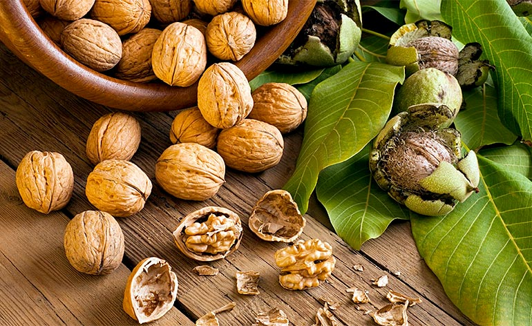 Useful fats from walnuts   LuckyFit