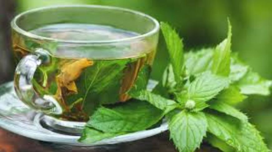 Detox tea with menta | LuckyFit