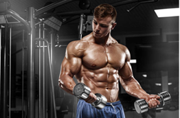 Workout for the whole body or its division into muscle groups?